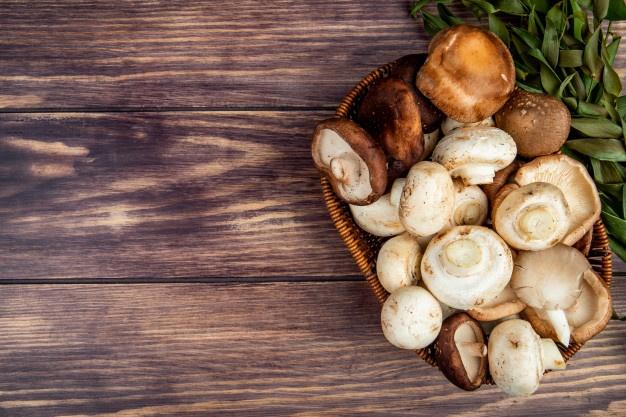 Conheça 2 maneiras de preparar cogumelos e aproveitar a deliciosidade do alimento